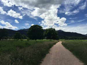 Gravel path through green grasses, blue skies, and mountains