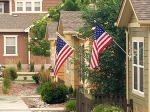 american flags in gold hill mesa photo